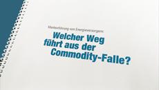 Marken-Leitpapier Energieversorger Markentechnik Consulting